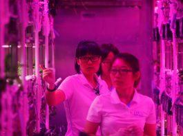 شبیه سازی 200 روز زندگی روی سیارهای دیگر؛ پروژه دانشجویان چینی!